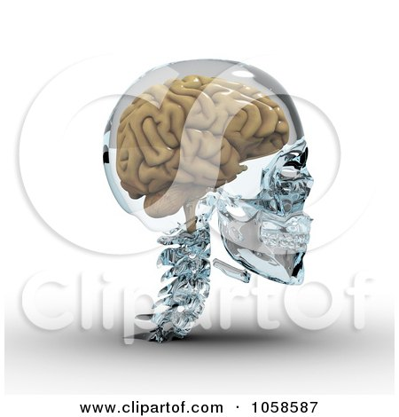 Royalty-Free CGI Clip Art Illustration of a 3d Brain In A Glass Skull - 2 by Michael Schmeling