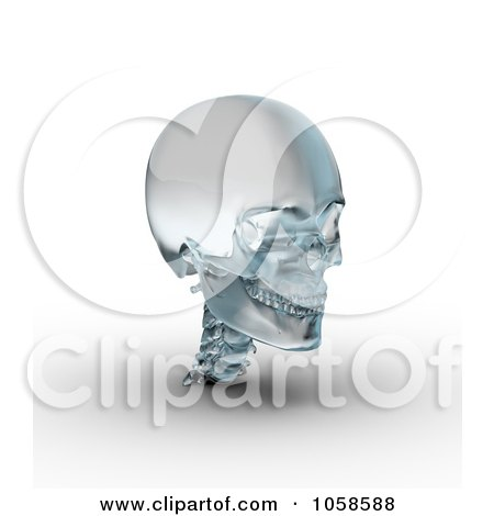 Royalty-Free CGI Clip Art Illustration of a 3d Frosted Glass Skull by Michael Schmeling