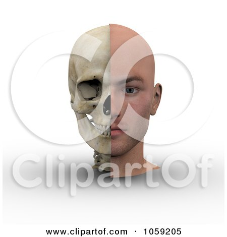 Royalty-Free CGI Clip Art Illustration of a 3d Male Head Showing Half With Flesh, Half With Bone - 1 by Michael Schmeling