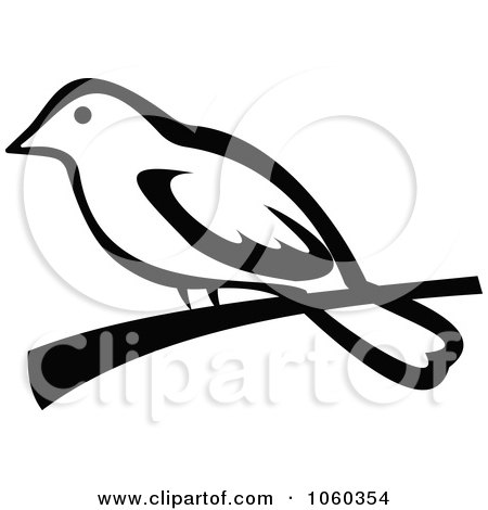 Royalty free vector clip art illustration of a black and white bird