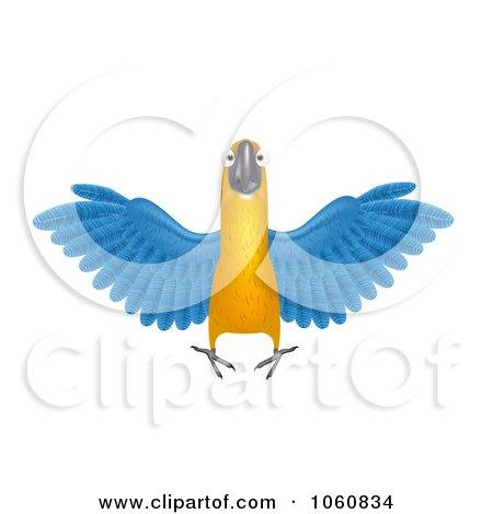 clip art free macaw