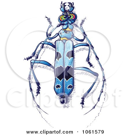 Clipart Blue Rosalia Longicorn Beetle - Royalty Free Vector Illustration by Zooco