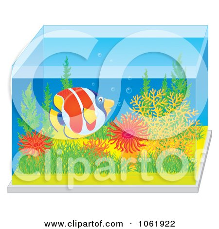 Clipart Marine Fish In A Saltwater Tank - Royalty Free Illustration by Alex Bannykh