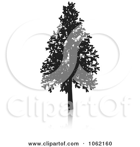 Clipart Fir Tree Silhouette - Royalty Free Vector Illustration by KJ Pargeter