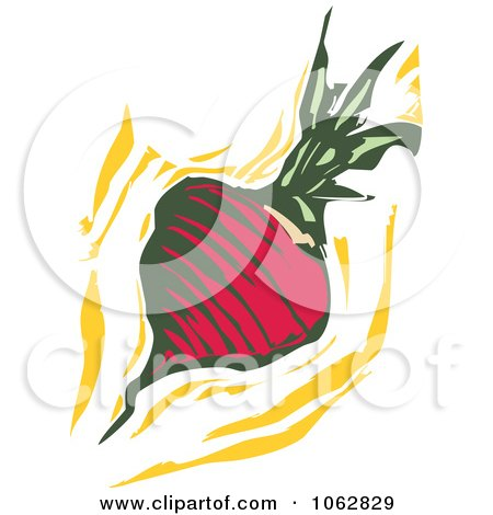 Clipart Woodcut Styled Turnip Or Radish - Royalty Free Vector Illustration by xunantunich