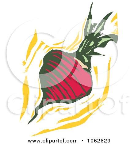 Woodcut Styled Turnip Or Radish Posters, Art Prints