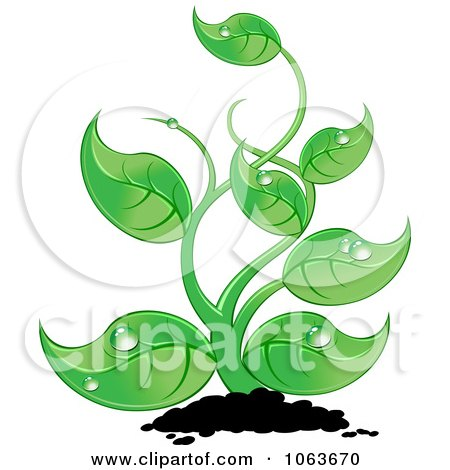 Clipart Lush Seedling Plant - Royalty Free Vector Illustration by Vector Tradition SM