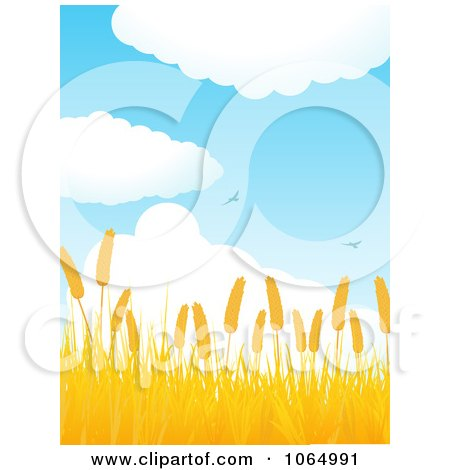 Clipart Birds Flying Over A Golden Wheat Field - Royalty Free Vector Illustration by elaineitalia