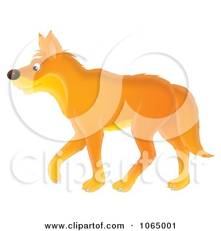 Clipart Orange Wolf Walking Royalty Free Illustration