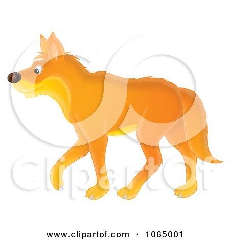 Clipart Orange Wolf Walking - Royalty Free Illustration by Alex Bannykh