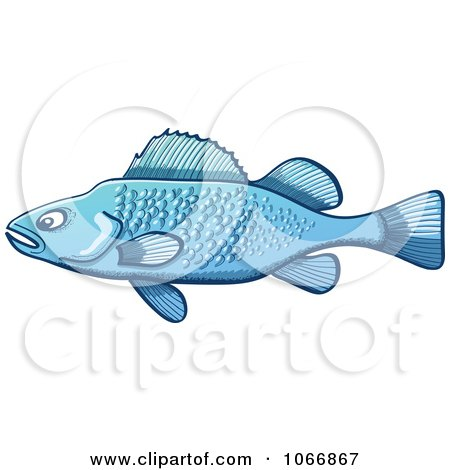 Clipart Blue Largemouth Bass Fish - Royalty Free Vector Illustration by Zooco