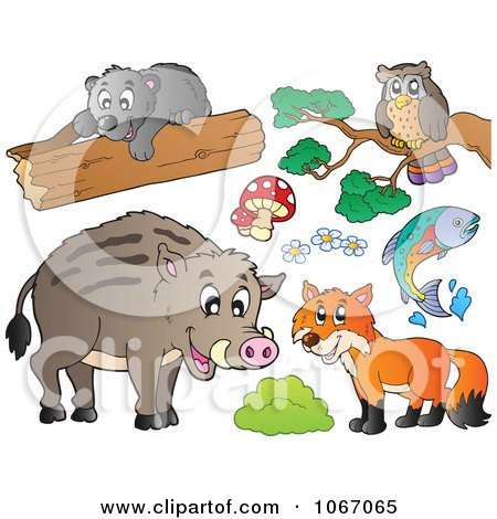 Clipart Forest Animals 1 - Royalty Free Vector Illustration by visekart