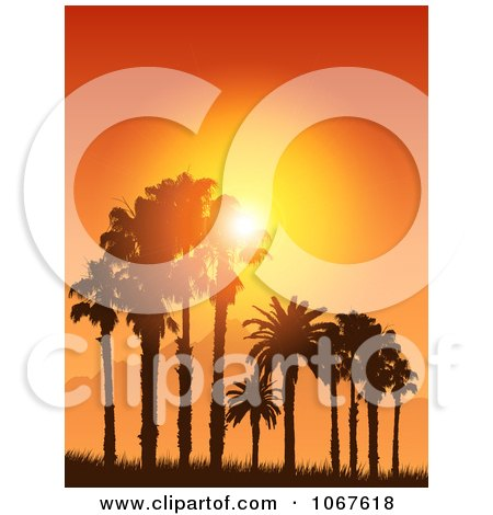 Clipart Tropical Sunset Silhouetting Palm Trees - Royalty Free Vector Illustration by KJ Pargeter