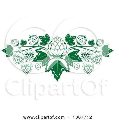 Clipart Hops And Leaves - Royalty Free Vector Illustration by Vector Tradition SM