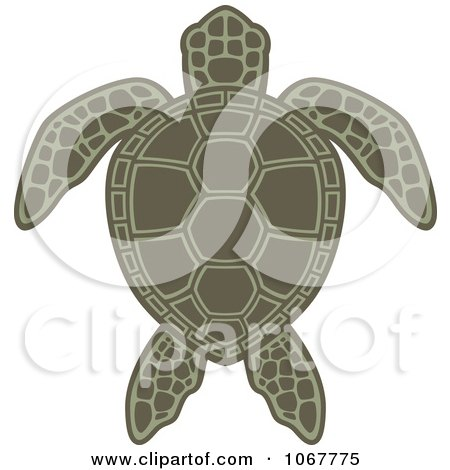 Clipart Green Sea Turtle - Royalty Free Vector Illustration by John Schwegel