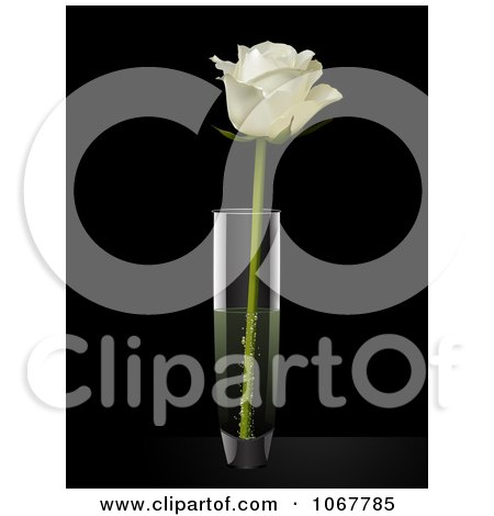 Clipart White Rose In A Vase - Royalty Free Vector Illustration by elaineitalia