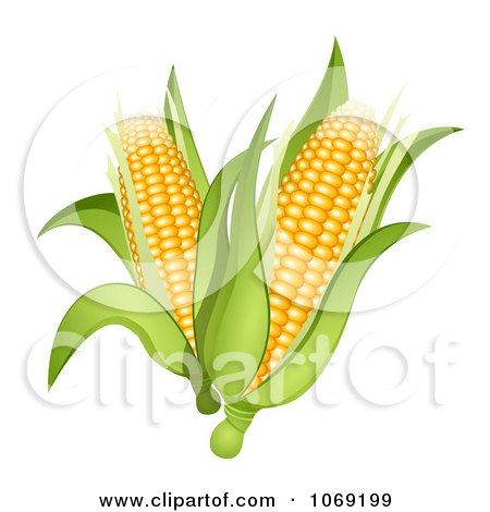Clipart 3d Corn Cobs - Royalty Free Vector Illustration by Oligo