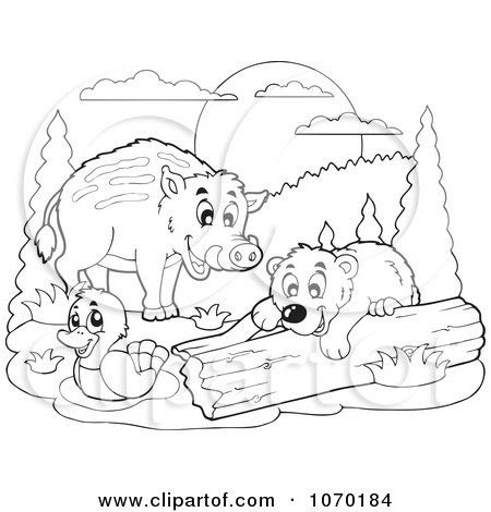 Clipart Outlined Duck Boar And Bear - Royalty Free Vector Illustration by visekart