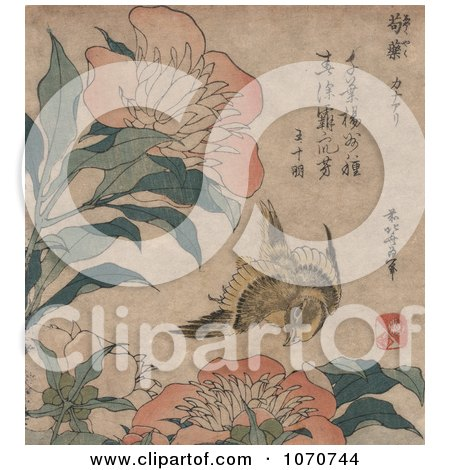 Royalty Free Historical Illustration of a Yellow Canary Bird Flying by Pink Peony Flowers by JVPD