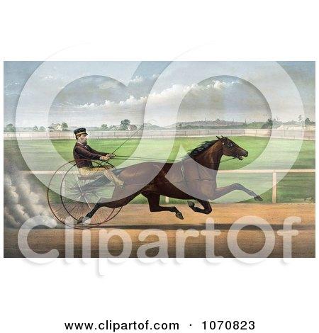 Illustration of J. Bowen Trotting A Horse Named Joe Elliott At Mystic Park In Medford, Massachusetts, June 28th 1872 - Royalty Free Historical Clip Art by JVPD