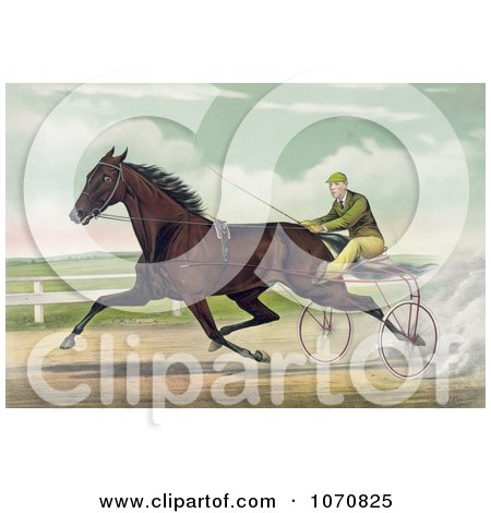 Illustration of a Man Racing A Horse On A Two Wheel Sulky - Royalty Free Historical Clip Art by JVPD