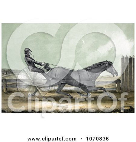 Illustration of The Trotting Horse Named Trustee In His 20th Mile On October 20th 1848 - Royalty Free Historical Clip Art by JVPD