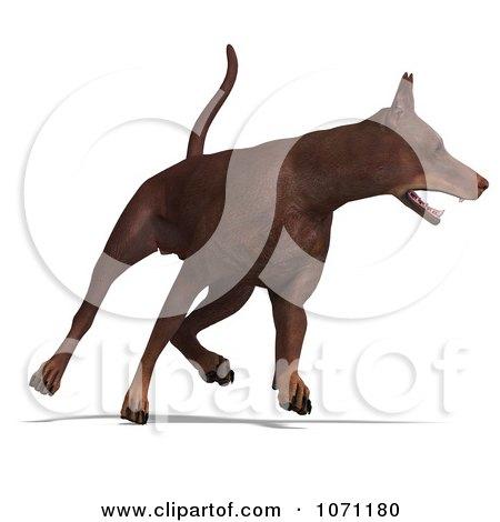 Clipart 3d Red Doberman Pinscher Dog Running 2 - Royalty Free CGI Illustration by Ralf61