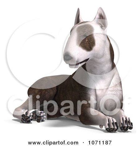 Clipart 3d Bull Terrier Dog Sitting - Royalty Free CGI Illustration by Ralf61