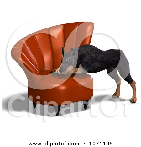Clipart 3d Black Doberman Pinscher Dog Resting His Head On A Chair - Royalty Free CGI Illustration by Ralf61
