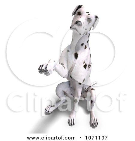 Clipart 3d Dalmatian Dog Reaching Out With A Paw - Royalty Free CGI Illustration by Ralf61