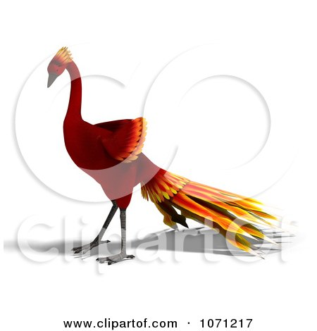 Clipart 3d Red Peacock Or Phoenix 4 - Royalty Free CGI Illustration by Ralf61