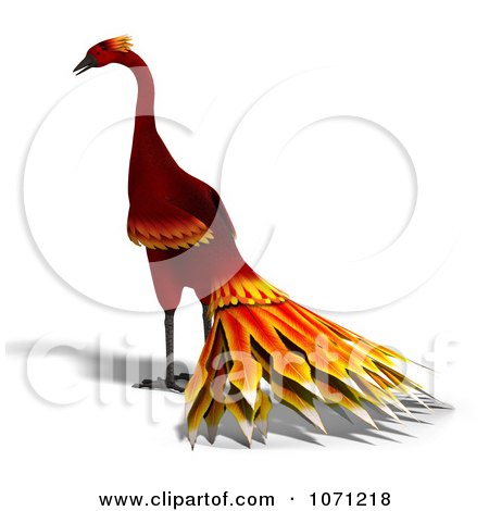 Clipart 3d Red Peacock Or Phoenix 3 - Royalty Free CGI Illustration by Ralf61