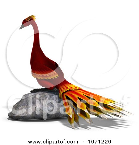Clipart 3d Red Peacock Or Phoenix On A Rock - Royalty Free CGI Illustration by Ralf61