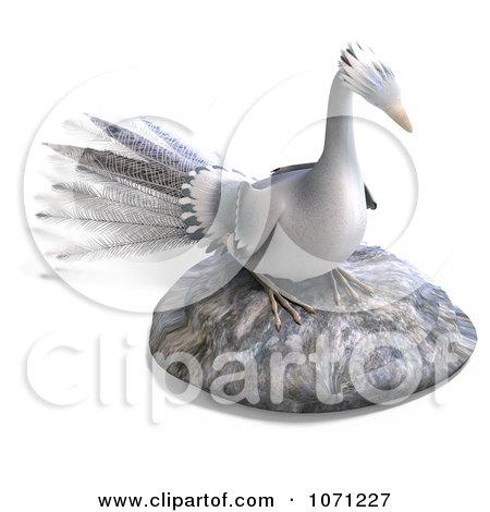 Clipart 3d White Peacock On A Rock - Royalty Free CGI Illustration by Ralf61