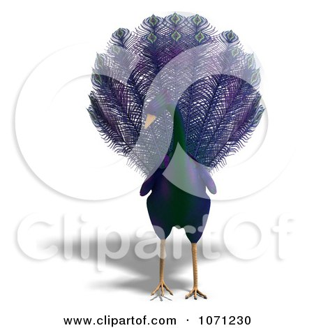 Clipart 3d Purple Peacock 1 - Royalty Free CGI Illustration by Ralf61
