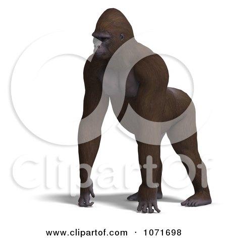 3d Gorilla Walking Posters, Art Prints