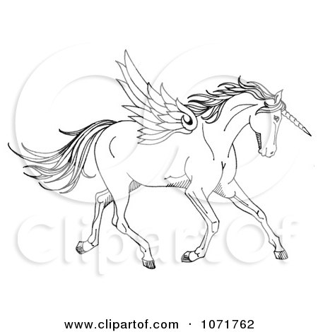 Clipart Black And White Sketched Fantasy Winged Unicorn Horse - Royalty Free Illustration by LoopyLand