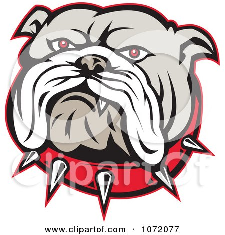 Clipart Angry Bulldog Face And Spiked Collar - Royalty Free Vector Illustration by patrimonio