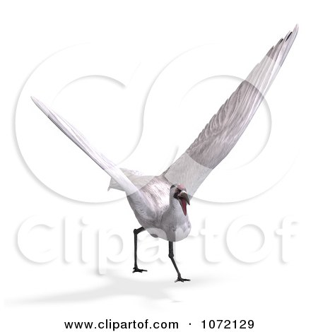 Clipart 3d White Crane Bird Flying 2 - Royalty Free CGI Illustration by Ralf61