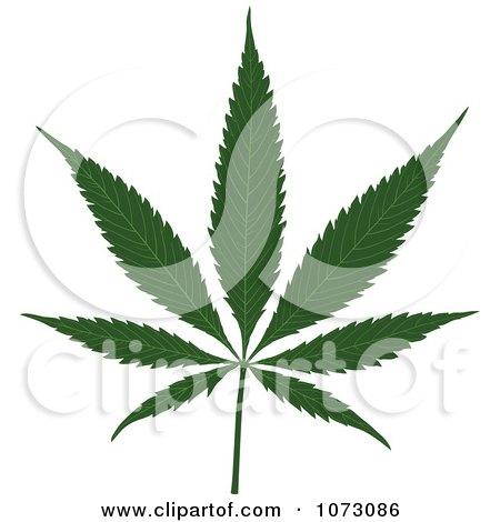 Clipart Medical Marijuana Pot Leaf - Royalty Free Vector Illustration by dero