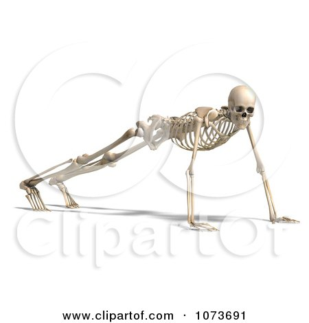 Clipart 3d Human Male Skeleton Doing Push Ups - Royalty Free CGI Illustration by Ralf61