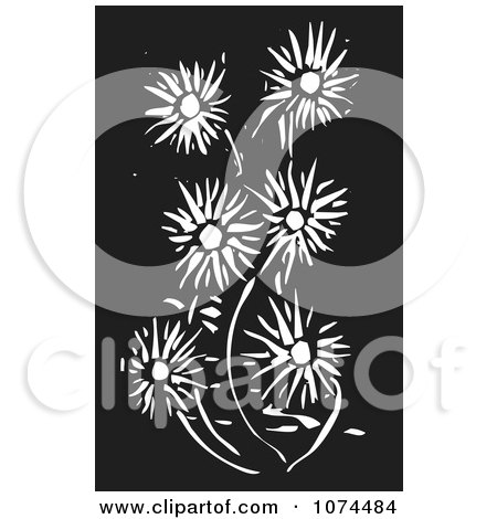 Clipart Black And White Woodcut Daisy Flowers - Royalty Free Vector Illustration by xunantunich