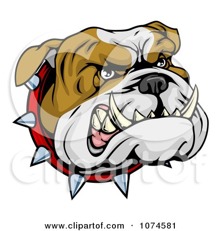 Clipart Aggressive Bulldog Face With A Spiked Collar - Royalty Free ...