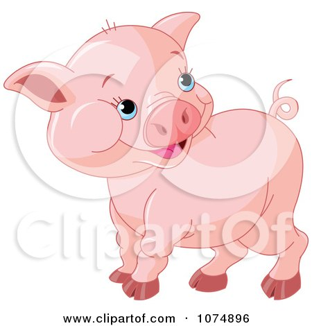 Pictures Baby Pigs on Cute Chubby Baby Pig By Pushkin