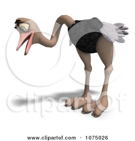 Clipart 3d Wild Ostrich Bird Looking Down - Royalty Free CGI Illustration by Ralf61