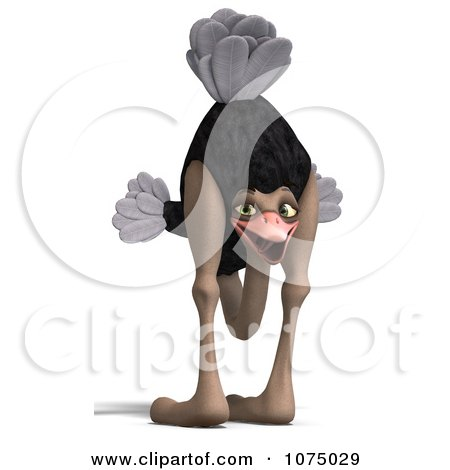 Clipart 3d Wild Ostrich Bird With His Head Between Its Legs 1 - Royalty Free CGI Illustration by Ralf61