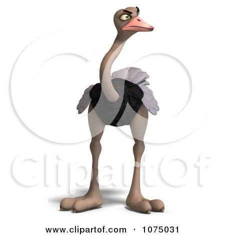 Clipart 3d Mad Wild Ostrich Bird 1 - Royalty Free CGI Illustration by Ralf61