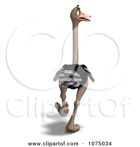 Clipart 3d Wild Ostrich Bird Walking 3 - Royalty Free CGI Illustration by Ralf61