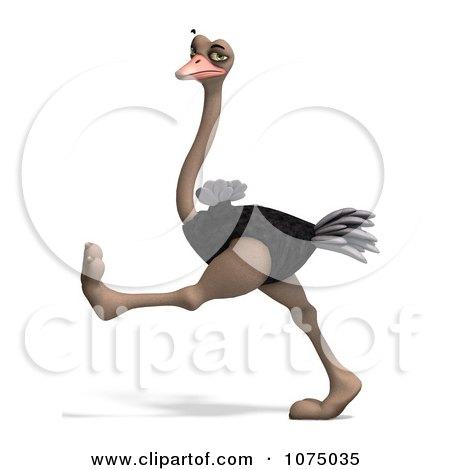 Clipart 3d Wild Ostrich Bird Walking 4 - Royalty Free CGI Illustration by Ralf61