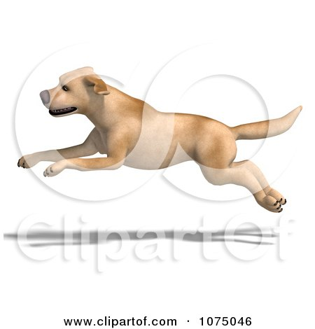 Clipart 3d Yellow Lab Dog Laying 1 - Royalty Free CGI Illustration ...